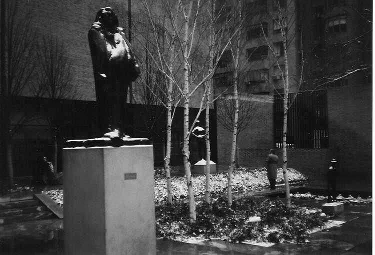 MOMAの中庭