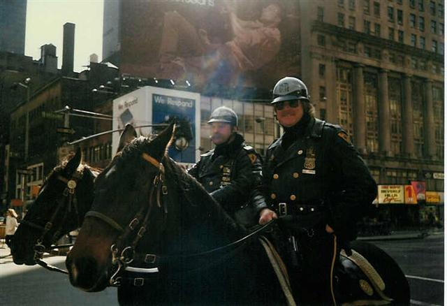 Horse mounted police