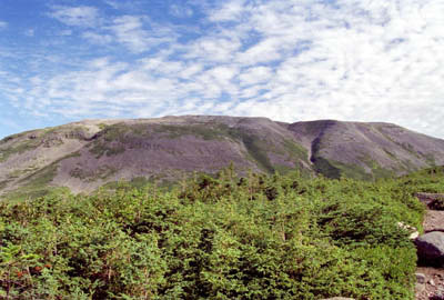 Mt. Gros Morne